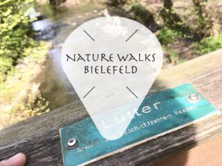 Die besten Spaziergänge in Bielefeld