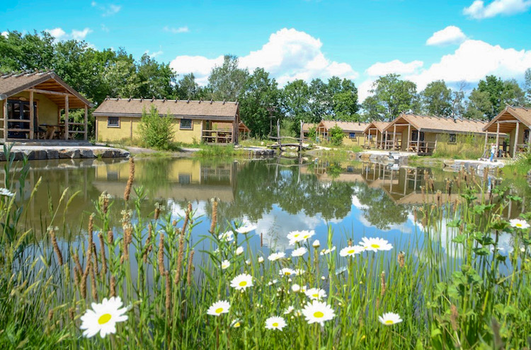 Germanenland Camping / Glamping in Bielefeld beim Glamping am Alfsee