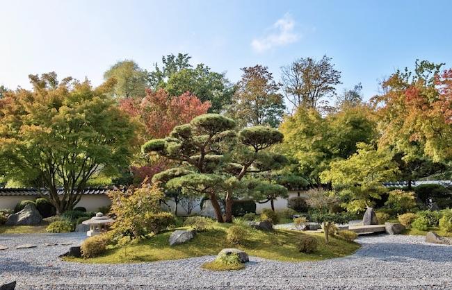 Japanese Garden (Markus Bechauf)