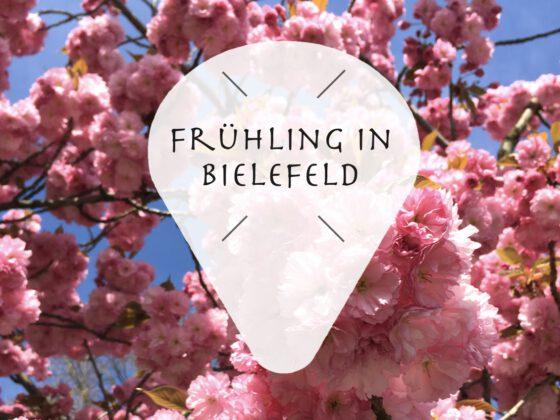 Bielefelder Parks Frühling in Bielefeld