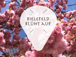 Bielefeld Blumen