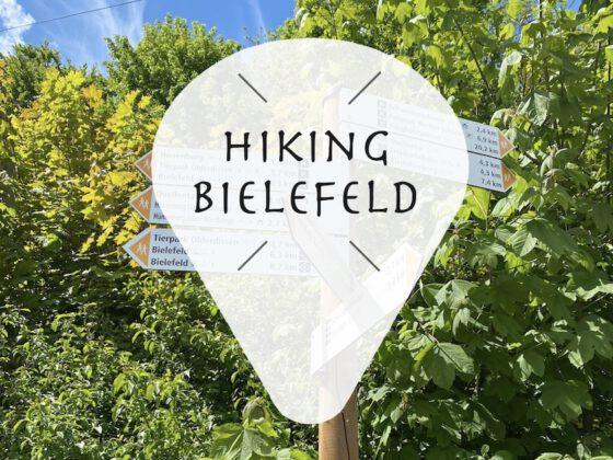 Wandern / Hiking in Bielefeld