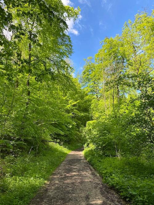 Wandern in Bielefeld