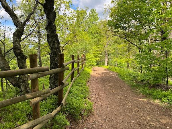 Wanderpfad nahe des Halleluja-Steinbruchs